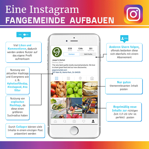 Instagram Follower bekommen Infografik